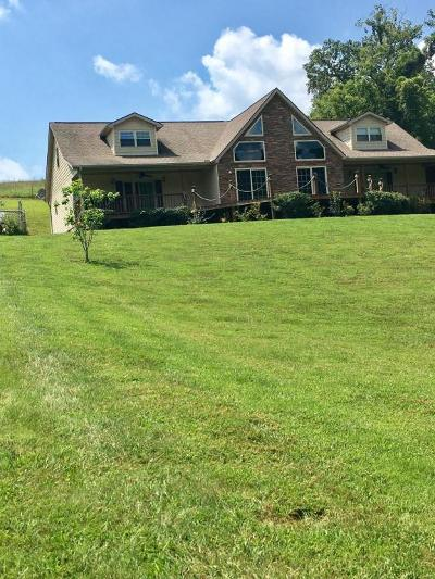 New Tazewell Single Family Home For Sale: 5563 Lone Mountain Rd