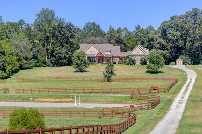 Lenoir City Single Family Home For Sale: 7876 Hines Valley Rd