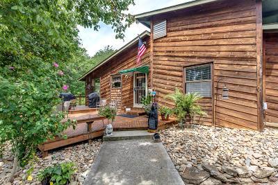Maynardville Single Family Home For Sale: 196 Thomas Weaver Rd