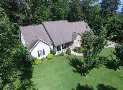 Rocky Top Single Family Home For Sale: 570 Stephens Rd