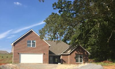 Maryville Single Family Home For Sale: 1701 Griffitts Mill Circle