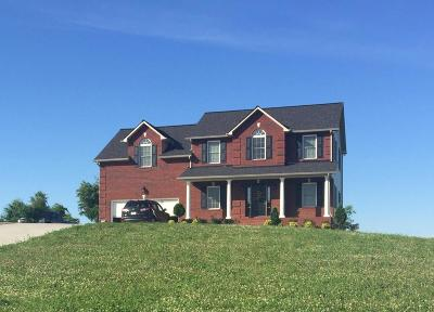 Tazewell Single Family Home For Sale: 158 Dudley Circle