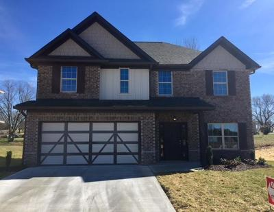 Knoxville Single Family Home For Sale: Lot 2 Dutchtown Woods