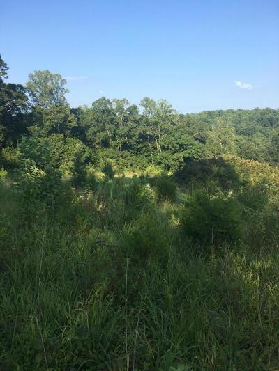 Heiskell Residential Lots & Land For Sale: 9760 Chestnut Ridge Rd
