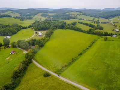Blaine Residential Lots & Land For Sale: Briscoe Rd