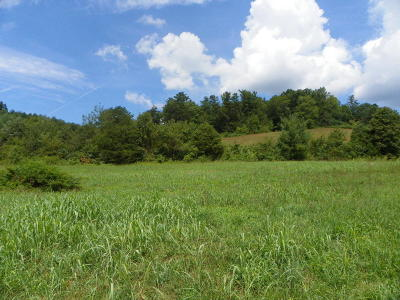 Sevierville Residential Lots & Land For Sale: Tract#1 Waldens Creek
