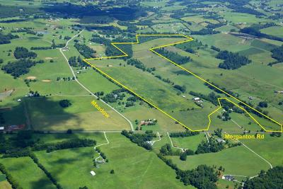Greenback Residential Lots & Land For Sale: Sheets Hollow Rd