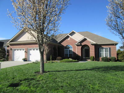 Loudon Single Family Home For Sale: 222 Tommotley Drive