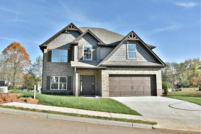 Knoxville Single Family Home For Sale: 818 Festival Lane (Lot 5)