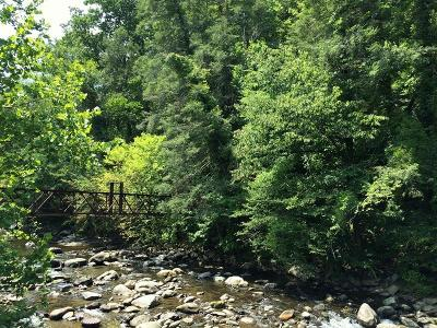 Gatlinburg Residential Lots & Land For Sale: Parkway
