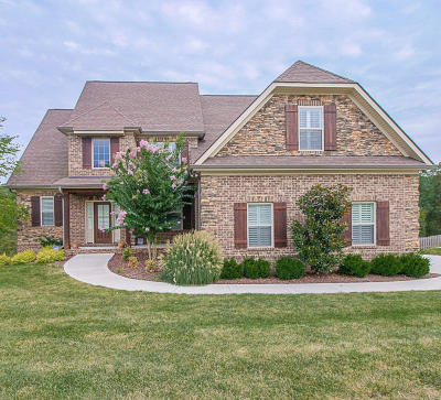 Knoxville Single Family Home For Sale: 1724 Botsford Drive