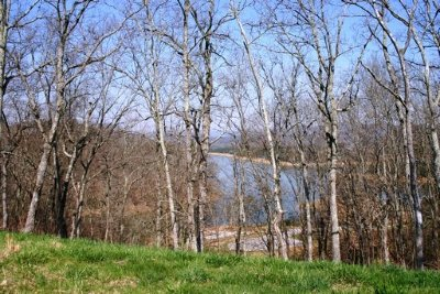 Russellville, Whitesburg Residential Lots & Land For Sale: 2001 Turner Landing Rd