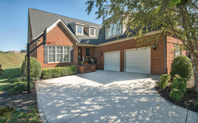 Knoxville Single Family Home For Sale: 501 Raeburn Lane