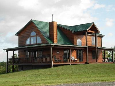 Tellico Plains Single Family Home For Sale: 241 Jones Drive