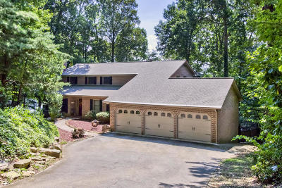 Blount County, Knox County, Loudon County, Monroe County Single Family Home For Sale: 120 Tigitsi Lane