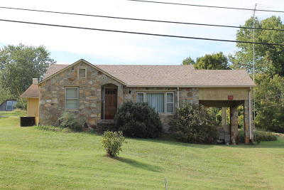 Seymour Single Family Home For Sale: 934 Boyds Creek Hwy