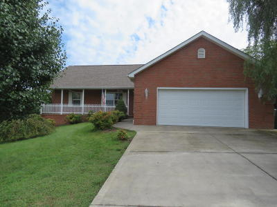 Knoxville Single Family Home For Sale: 2240 Berrywood Drive
