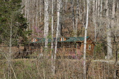 Lafollette Single Family Home For Sale: 108 Pearl Rd