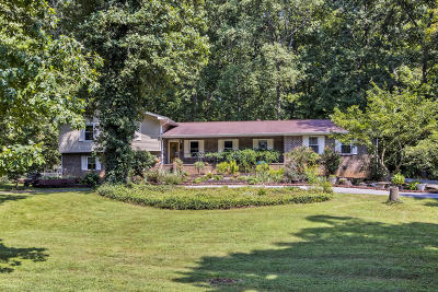 Loudon Single Family Home For Sale: 744 Butler Drive
