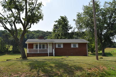 Seymour Single Family Home For Sale: 919 S Old Sevierville Pike