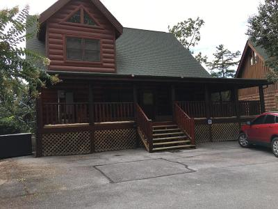 Sevierville Single Family Home For Sale: 2064 Bear Haven Way