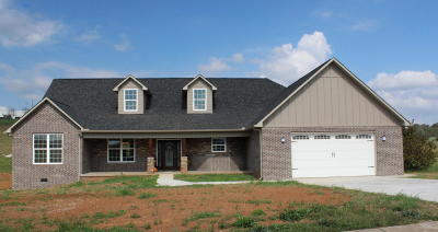 Sevierville Single Family Home For Sale: 1330 Rippling Water Creek