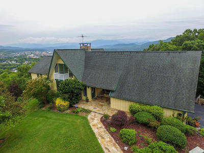 Pigeon Forge Single Family Home For Sale: 1120 Crestview Drive