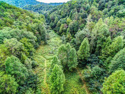 Sevierville Residential Lots & Land For Sale: 3123 Oldham Creek Rd