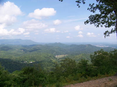 Sevierville Residential Lots & Land For Sale: Lot# 16 Laurel Top Way