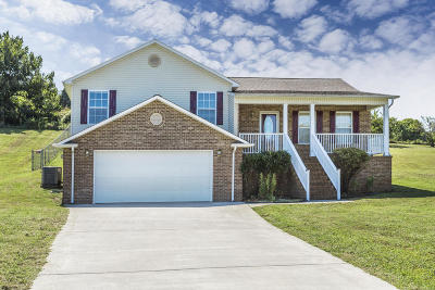 Friendsville Single Family Home For Sale: 1753 Derby Downs Drive
