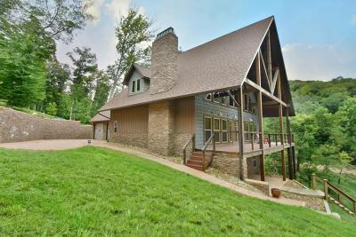 Union County Single Family Home For Sale: 265 Swan Seymour Rd