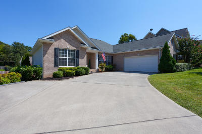 Knoxville Single Family Home For Sale: 10018 Madison Ridge Lane