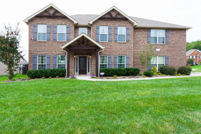 Knoxville Single Family Home For Sale: 1801 Falcon Pointe Drive