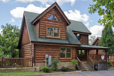 Sevierville Single Family Home For Sale: 1336 Timberwolf Way