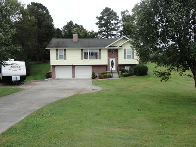 Single Family Home For Sale: 7631 Sevierville Pike
