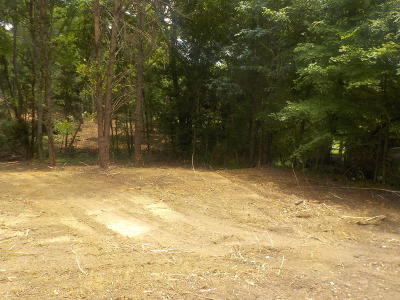 Grainger County Residential Lots & Land For Sale: Old Rutledge Pike