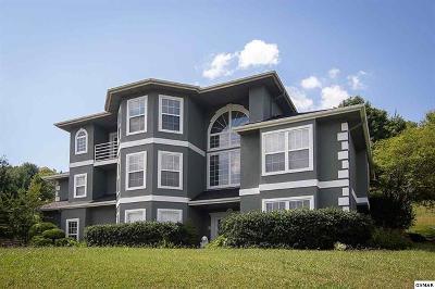 Sevierville Single Family Home For Sale: 233 Lexington Place