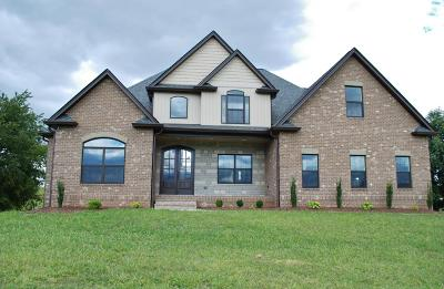 Sevierville Single Family Home For Sale: 1308 Rippling Waters
