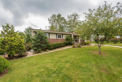 Knoxville Single Family Home For Sale: 9232 SW Guyot Drive