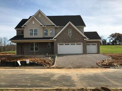 Knoxville Single Family Home For Sale: Lot 19 Capricorn Ln