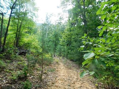Maryville Residential Lots & Land For Sale: 3745 Chilhowee Tr