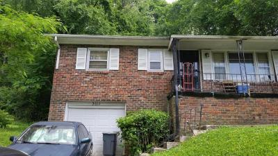 Knoxville Single Family Home For Sale: 3114 Lay Ave