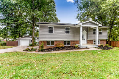 Knoxville Single Family Home For Sale: 309 Snowbird Drive