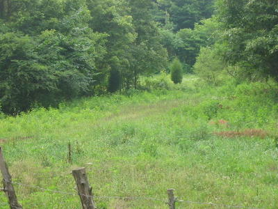 Residential Lots & Land For Sale: Mason Hollow Rd