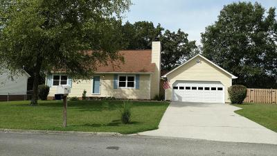 Knoxville Single Family Home For Sale: 1129 Terra Rosa Drive