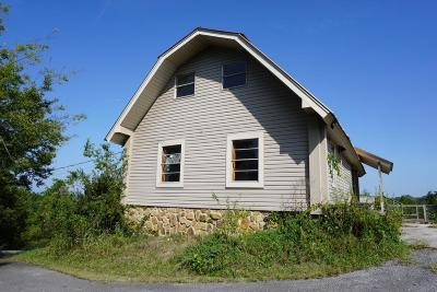 Sevierville Single Family Home For Sale: 356 Alder Branch Rd