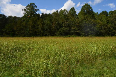 Maryville Residential Lots & Land For Sale: Clover Hill Rd