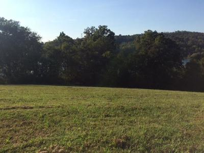 Blount County, Loudon County, Monroe County Residential Lots & Land For Sale: 301 River Bank Trail