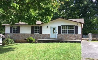 Knoxville Single Family Home For Sale: 5112 Middle Ridge Lane