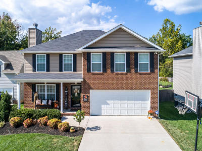 Knoxville Single Family Home For Sale: 8559 Golden Cloud Lane